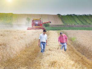 Österreichische Bauern begutachten ihre Ernte