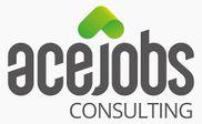 Firmenlogo ACE consulting GmbH